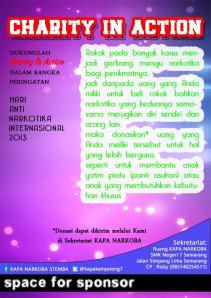 kapa action 2